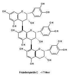 extrait de pepin de raisin OPC