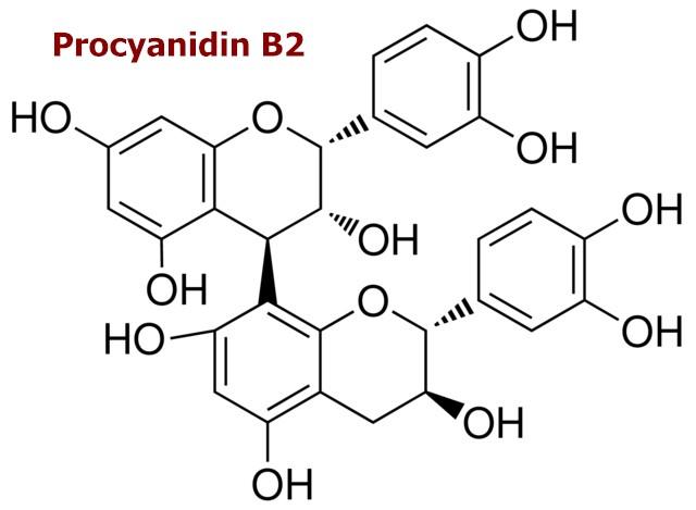 procyanidine B2